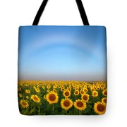 A Fog Bow Over The Colorado Sunflower Fields Tote Bag