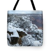 A Foot At The Canyon Tote Bag