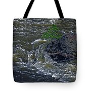 A Forest Of One Tote Bag