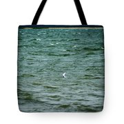 A Forster Tern Fighting The Winds Out At Sea Tote Bag