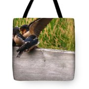 A Fourth Baby Barn Swallow Wants In On Lunch Tote Bag