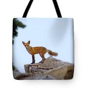 A Fox On The Rocks Tote Bag