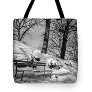 A Frigid Moment Tote Bag