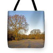 A Frosty Sunday Morning Tote Bag