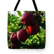 A Full Branch  Tote Bag
