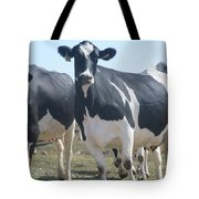 A Full Grown Holstein Cow Tote Bag