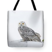 A Game Of Fetch Tote Bag