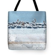 A Gathering Of Pelicans Tote Bag