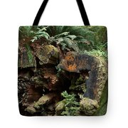 A Giant Falls - Life Emerges Tote Bag