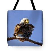 A Glance Back Tote Bag