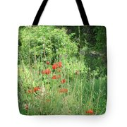 A Glimpse Of Poppies Tote Bag