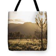 A Golden Morning Tote Bag