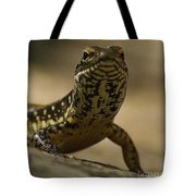 A Golden Skink Tote Bag