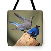 A Great Pair Tote Bag
