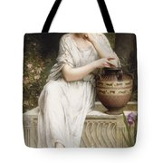 A Grecian Beauty Tote Bag