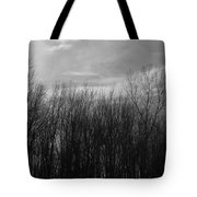 A Grey Point Of View Tote Bag