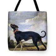 A Greyhound Lurking Tote Bag