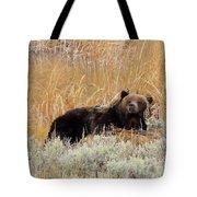 A Grizzily On A Buffalo Carcass Tote Bag