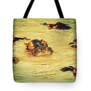 A Group Of Hippos In A River. Tanzania Tote Bag