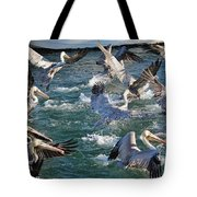 A Group Of Pelicans Tote Bag