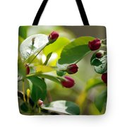A Group Of Red Tree Flowers Tote Bag