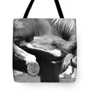 A Hard To Reach Itch Bw Tote Bag