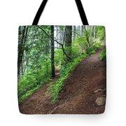 A Hiking Trail Goes Up Saddle Mountain Tote Bag
