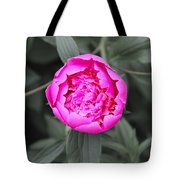 A Hint Of Pink In The Garden Tote Bag