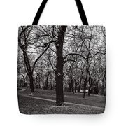 A Hint Of Winter Tote Bag