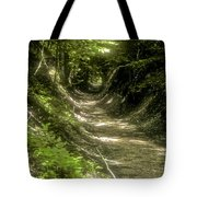 A Hole In The Forest Tote Bag by Bob Phillips