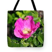 A Hornet And Beach Rose Tote Bag