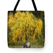 A Horse And A Willow Tree Tote Bag