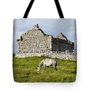 A Horse Grazing In A Field Tote Bag