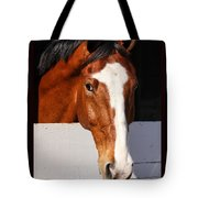 A Horse Is A Horse Of Course By Diana Sainz Tote Bag