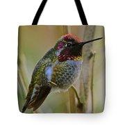 A Hummingbird Rainbow Tote Bag
