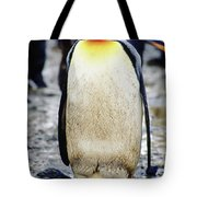 A King Penguin Holds Its Egg Tote Bag