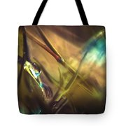 A La Lumiere Tote Bag by Taylan Apukovska