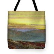 A Lake Landscape At Sunset Tote Bag