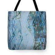 A Lakeside Walk At Sunset Tote Bag