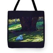 A Lamb In Wales Tote Bag