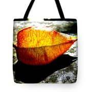 A Lantern Lit By Sunlight Tote Bag