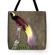 A Large Bird Of Paradise Tote Bag