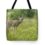 A Late Summer's Morning Tote Bag