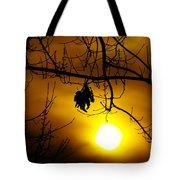 A Leaf Hanging On  Tote Bag