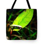 A Leaf... Tote Bag