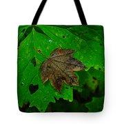 A Leaf Upon A Leaf Tote Bag