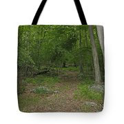 A Leisurely Stroll Through The Putnam County Veteran Memorial Park Woods Tote Bag