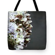 A Lichen Abstract 2013 Tote Bag