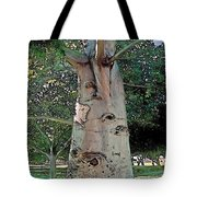 A Lifetime Of Scars Tote Bag