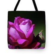 A Light Blue Rose  Tote Bag
